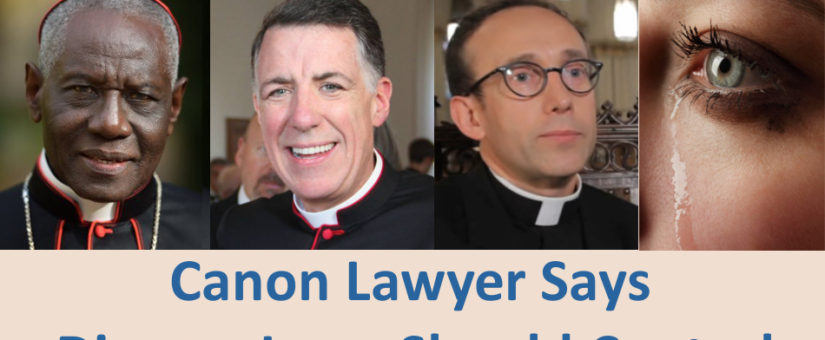 US Canon Lawyer Says Divorce Laws Should Control